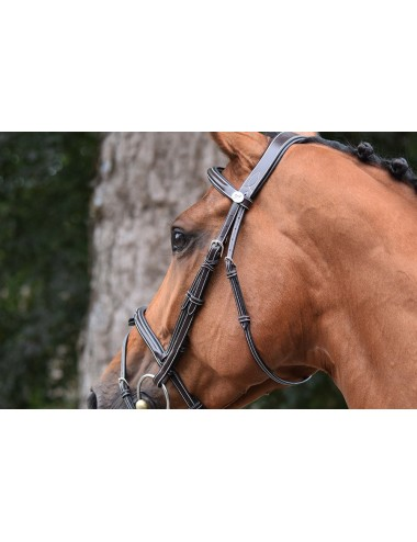 Thursday Bridle - Week Collection