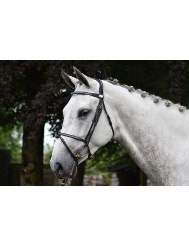 Sunday Bridle - Week Collection