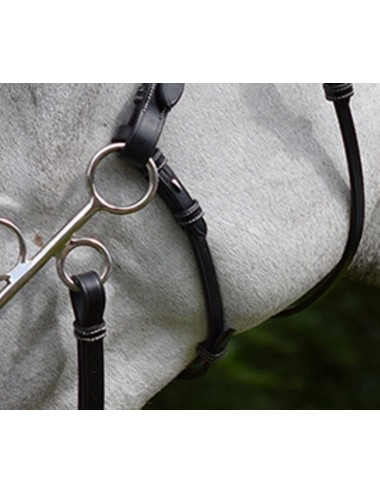 Hackamore Cheek Pieces and Strap - Week Collection