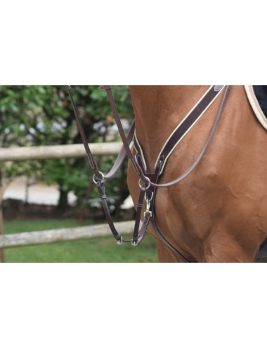 Elastic Breastplate and martingale