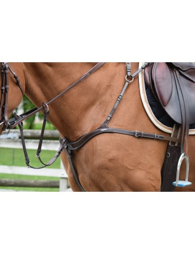 2 in 1 Breastplate and Martingale
