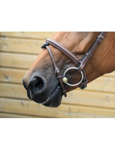 London Noseband - One Collection