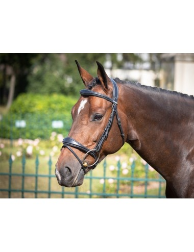 Bruxelles Bridle - One Collection