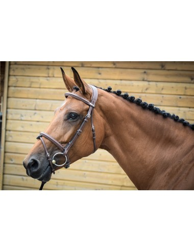 London Bridle - One Collection