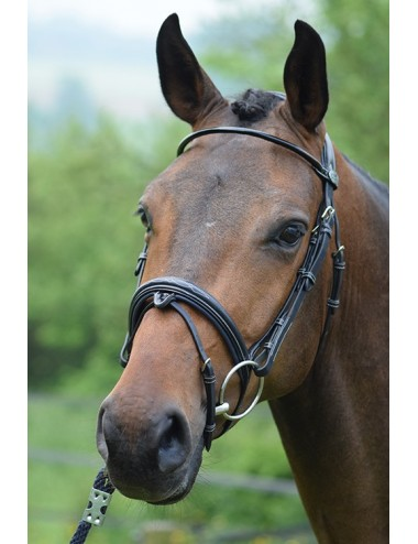 Wednesday Bridle - Week Collection